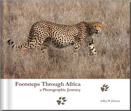 screenshot of new book cover